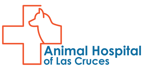 Animal Hospital of Las Cruces